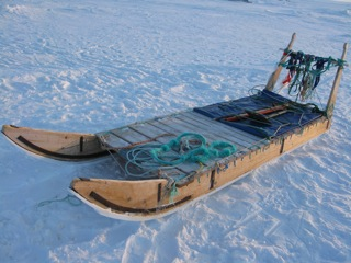 Traditional dog sled - heavy duty.