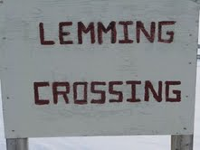 Lemmings inhabit the Arctic; and, presumably, are numerous enough to require a road crossing sign near Eureka Weather Station.